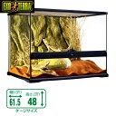 GEX グラステラリウム   6045 爬虫類 飼育 ケージ ガラスケージ 【水槽/熱帯魚/観賞魚/飼育】【生体】【通販/販売】【アクア…