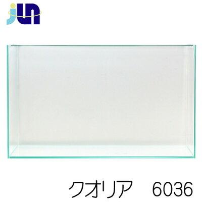 JUNクオリア6036(60×30×36cm)クリアガラスフレームレス【水槽/熱帯魚/観賞魚/飼育】【生体】【通販/販売】【アクアリウム】