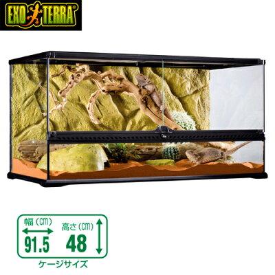 GEXグラステラリウム9045爬虫類飼育ケージガラスケージ【水槽/熱帯魚/観賞魚/飼育】【生体】【通販】【アクアリウム】