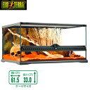 GEX グラステラリウム   6030 爬虫類 飼育 ケージ ガラスケージ 【水槽/熱帯魚/観賞魚/飼育】【生体】【通販/販売】【アクアリ…