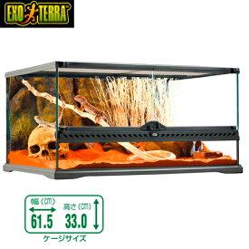 GEX グラステラリウム   6030 爬虫類 飼育 ケージ ガラスケージ 【水槽/熱帯魚/観賞魚/飼育】【生体】【通販/販売】【アクアリウム/あくありうむ】
