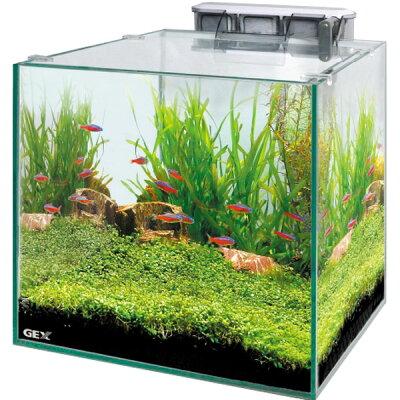 GEXグラステリアキューブ300セット【水槽セット】【飼育セット】