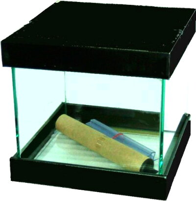 JUN220キューブ水槽【取寄商品】【水槽/熱帯魚/観賞魚/飼育】【生体】【通販】【水槽台】【アクアリウム】