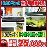 水槽熱帯魚大特価!!コトブキプログレ600豪華13点+木製水槽台セット!