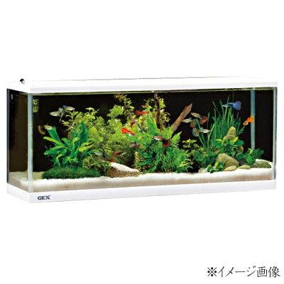 水槽熱帯魚GEXデスクボーイホワイト5点セット