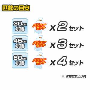 【バリューセット】▼ネオンテトラ(SM)(約2cm)(17匹)+ミックスグッピー(約3cm)(3ペア)