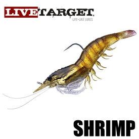 【ライブターゲット】 シュリンプ / Shrimp