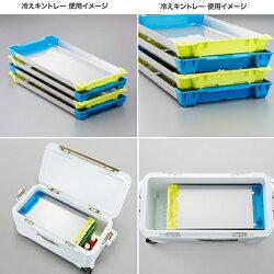 【シマノ】冷えキントレーLAC-C81Rイエローブルー※6月発売予定ご予約受付中