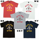ベーシックTシャツ クラシックJ(M・L・XLサイズ)[GOLD'S GYM_W ゴールドジムウェア]