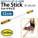 ザ・スティック (ショートサイズ 52cm) The Stick [SBCJ]
