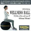 テクノジム アクティブシッティング バランスボールチェア(55cm) WELLNESS BALL 【送料無料】 [Technogym]