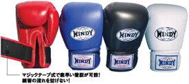 【入荷待ちご予約になります】WINDY(ウィンディ)トレーニンググローブ(マジックテープ式)BGVH