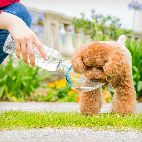 ペットボトル用給水デバイス クイックウォータークリア ペット用 ※ペットボトルは付属していません【犬用 猫用 吸水ボトル ウォーターボトル 水入れ 水飲み 散歩 お出かけ 夏バテ対策 熱中】
