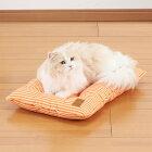 【4/17より順次発送】ボンビアルコンスクエアクッションオレンジ犬猫用