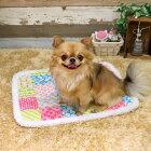 ドギーマン電気のいらない暖か、ほこほこ保温マットSカラフルボックス犬猫用