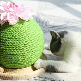 ラモダ猫の爪とぎサボテン木製ボール付き1個ねこかわいいユニーク面白いモチーフつめとぎツメトギ三栄コーポレーション