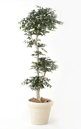 無光触媒加工 人工植物 サザンカ 1.5m