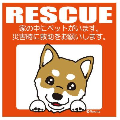 Leaps レスキュー ペットステッカー 柴犬 YL【防災グッズ ステッカー メール便】※ネコポス可:合計9枚まで※