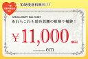 Ticket b1