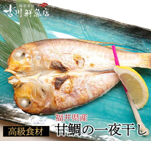 甘鯛の一夜干し( 250gサイズ/1枚 25cm) 若狭 日本海 福井 干物 産直 高級魚