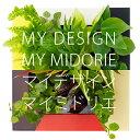 【midorie/自分で作るミドリエ♪】マイデザイン・マイミドリエ/全6色【壁掛け観葉植物】