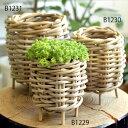 【観葉植物の鉢】ステム-stem Gray Rattan/グレイラタン・バスケット-脚付 13 x 12cm B1229