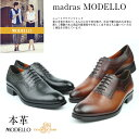 ポイント10倍×ポイントアップ 送料無料madras MODELLO マドラスマドラス モデロ 本革モデルメンズビジネスシューズ madras MODELLO DM5054