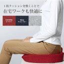 クッション 腰痛 椅子 テレワーク 座布団 低反発 低反発 腰痛 対策 オフィス クッショ...