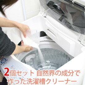 2個セット エコメイト(ECOMATE)洗濯槽クリーナー(NGPS)【在庫有】【あす楽】【s10】