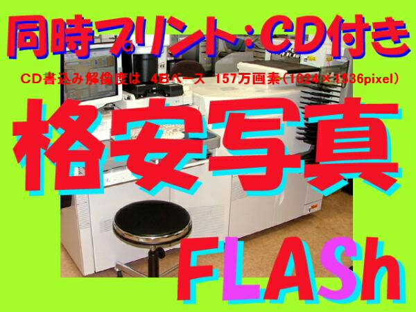 ハーフカラーフィルム現像+L版各1枚プリント+CD書込(4Bでデータ保存)フジカラー 同時プリント
