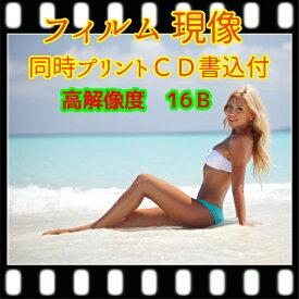 カラー フィルム 現像 L版 各1枚 プリント CD書込 高解像度 16B データ保存 35ミリ 写ルンです レンズ付きフィルム APS(ハーフは別出品) フジカラー 同時プリント 写真 ネガ