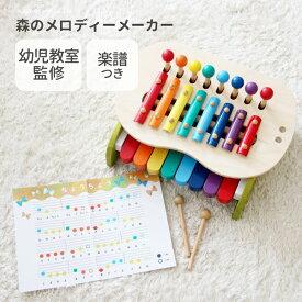 正規品 エドインター [森のメロディーメーカー] [あす楽対応] シロフォン 鉄琴 木のおもちゃ 木製玩具 楽器 おもちゃ 鍵盤 知育玩具