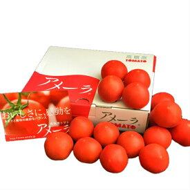 静岡産 高糖度フルーツトマト アメーラ 約1kg入り 1箱