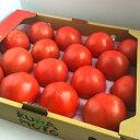 産地厳選 桃太郎トマト 大きさおまかせ 1箱12〜28玉入約4kg