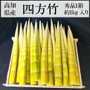 高知県産 四方竹 秀品 約1kg入り 1箱