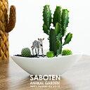 サボテン 多肉植物 楽天1位 オシャレなインテリア サボテン 寄せ植え 大雲閣 舟形タイプ 陶器鉢選べるシュライヒ動物…