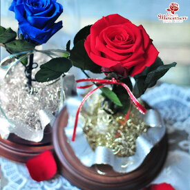 《forever in love》 ガラスドーム プロポーズ 赤 青 レッド ブルー ブルーローズ ホワイトデー 送別 退職 記念日 プレゼント ギフト 誕生日 結婚祝い 結婚記念日 美女と野獣 バラ一輪 クリスマス 枯れない花 プリザーブドフラワーブリザードフラワー ブリザーブドフラワー