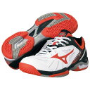 WAVE EXCEED DS3 fit(ウェーブ エクシードDS3フィット)【MIZUNO テニスシューズ】61GB141254