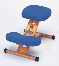 【あす楽対応】プロポーションチェア本体<青> 姿勢がよくなる椅子
