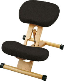 【あす楽対応】プロポーションチェア 本体<ブラック> 姿勢がよくなる椅子