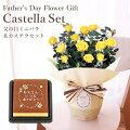 【父の日ギフト2021】お花で日頃の感謝を贈る!メンズがもらって嬉しいフラワーギフトのおすすめは?