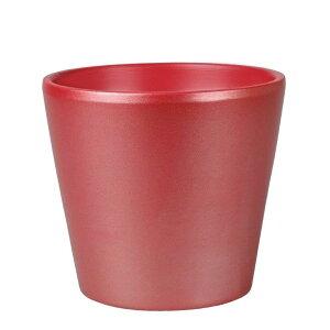 シンプルコンポートS レッド 24個セット SS101-RD 2020green | 鉢 ポット 花器 フラワー アレンジ グリーン 陶器 シック お祝い ディスプレイ ギフト