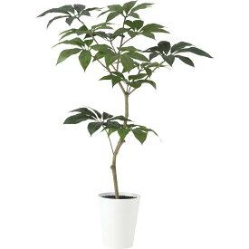 人工観葉植物 ツピダンサス FST150(器: SA-10(WH))91603|フェイクグリーン イミテーション インテリア 開店祝 新築祝 敬老の日 造花 観葉植物 大型 観葉植物 おしゃれ 観葉植物 インテリア 《2018ds》