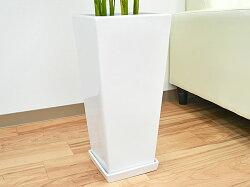 観葉植物アレカヤシロングスクエア陶器鉢植え8号サイズ陶器鉢の拡大