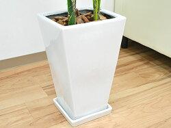 観葉植物ケンチャヤシスクエア陶器鉢植え8号サイズ陶器鉢の拡大