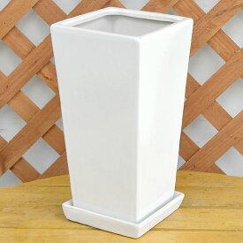 スクエア陶器鉢M ホワイト 6号サイズ