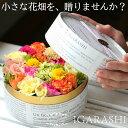 【 フラワーケーキ Sサイズ 】 花 ギフト 誕生日 ハロウイン お歳暮 秋 プレゼント アレンジメント フラワー お祝い …