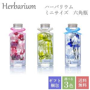 全3色からお好きに選べる1本入りギフトボックスセット ハーバリウム 母の日 誕生日 ギフト プレゼント ミニサイズ 六角瓶