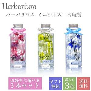全3色からお好きに選べる3本入りギフトボックスセット ハーバリウム 母の日 誕生日 ギフト プレゼント ミニサイズ 六角瓶