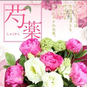 母の日 花束 芍薬 カーネーション ピンク 母の日ギフト 豪華 母の日ギフト 聖母のバラ 華やか コスパ ママ お母さん プレゼント しゃくやく シャクヤク